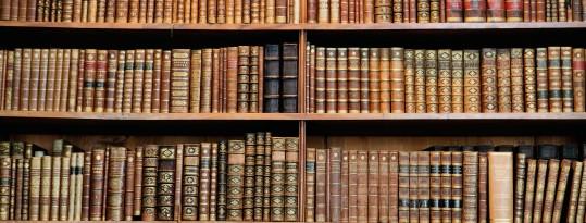 Viquipèdia, l'enciclopèdia lliure