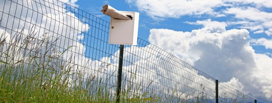 MailChimp llistes de distribució de correu o newsletter ben fetes